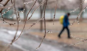 Blast of winter weather hits Montreal