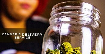The Growth of Online Cannabis Delivery in Canada